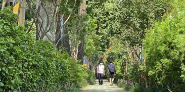 Seoul to Create 68 Forest Paths with 400,000 Trees to Reduce Particulate Matter and Enhance Pedestrian Convenience