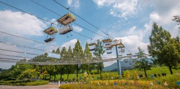 Seoul Grand Park's Healing Forest Becomes a Special  Shelter for Frontline Medical Workers