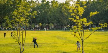 Administrative Order of No Drinking at Night in  Public Parks to Prevent the Spread of COVID-19
