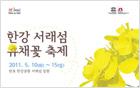 Rape Flower Festival at Hangang Seoraeseom