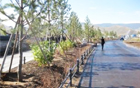 Seoul Forest Completed by Seoul Metropolitan Government in Ulan Bator, Mongolia