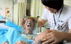 [Mayor Park Won Soon's Hope Journal 258] Ever Heard of Babo Hospitals?
