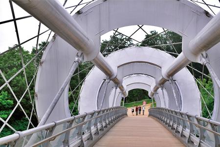 Silkworm Bridge