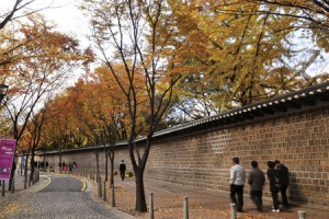 GINKGO TREES, STONE WALLS AND RED BRICK