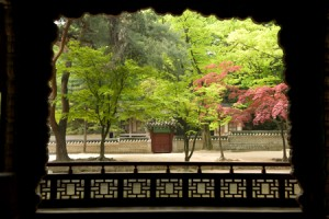Four Seasons of Seoul - Spring